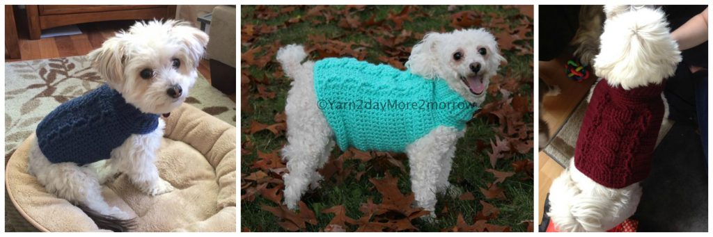 cabled-dog-sweater-friends