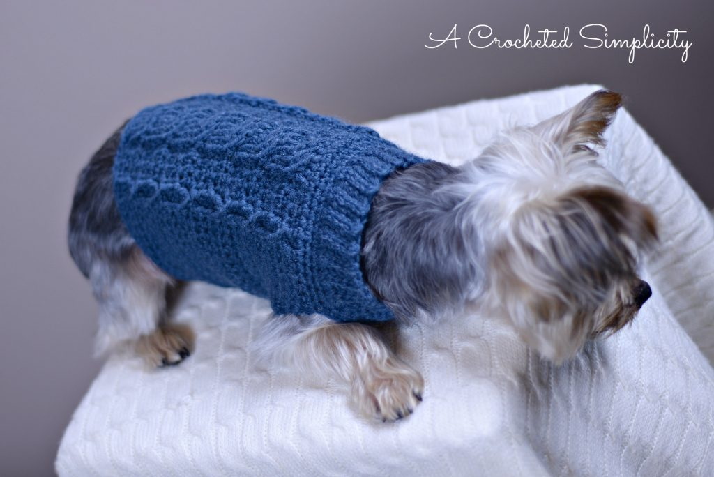 Free Crochet Pattern - Cabled Dog Sweater by A Crocheted Simplicity
